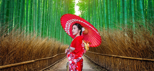japan-geisha-picutre-dire-straits-blog-post-when-we-visited-japan